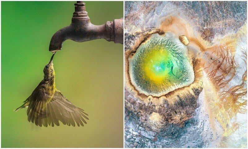30 потрясающих снимков, которые показывают великолепие нашей природы