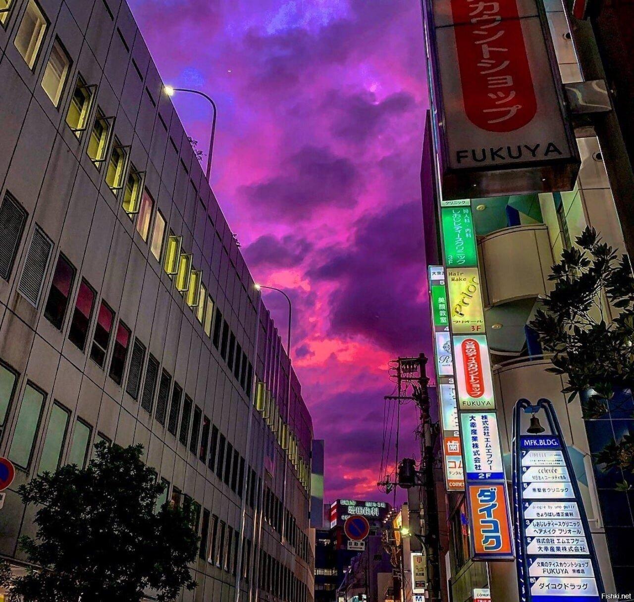 Невероятная природная особенность японской погоды – окрашивание неба в яркий ...