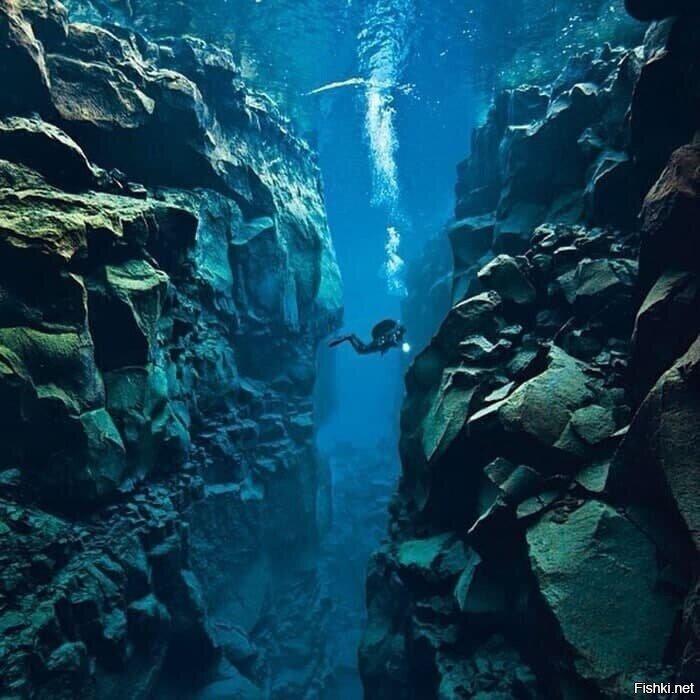 Исландия - единственное место в мире, где можно поплавать между двумя тектони...