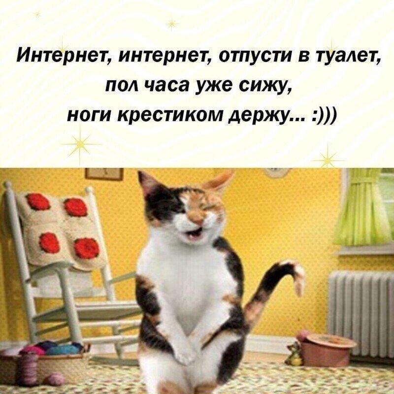 Стихотворные баталии Фишкян
