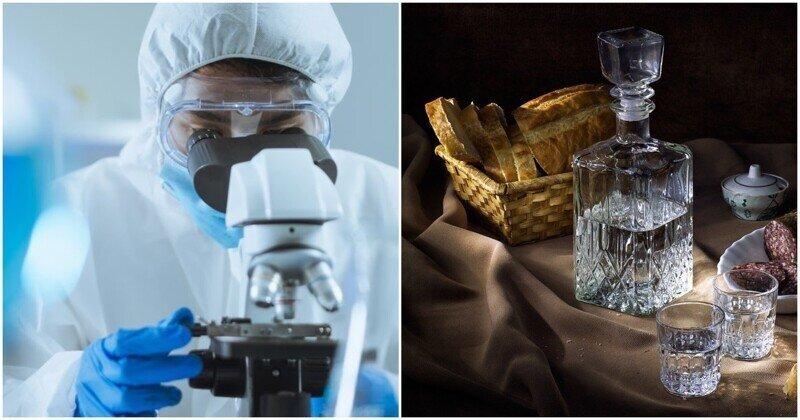 Наконец-то: случайно изобретена беспохмельная водка