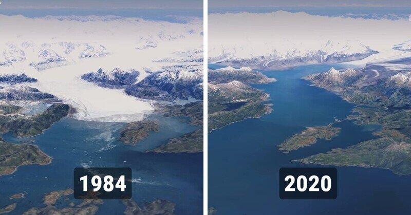 Как изменилась нашла планета с 1984 по 2020 год