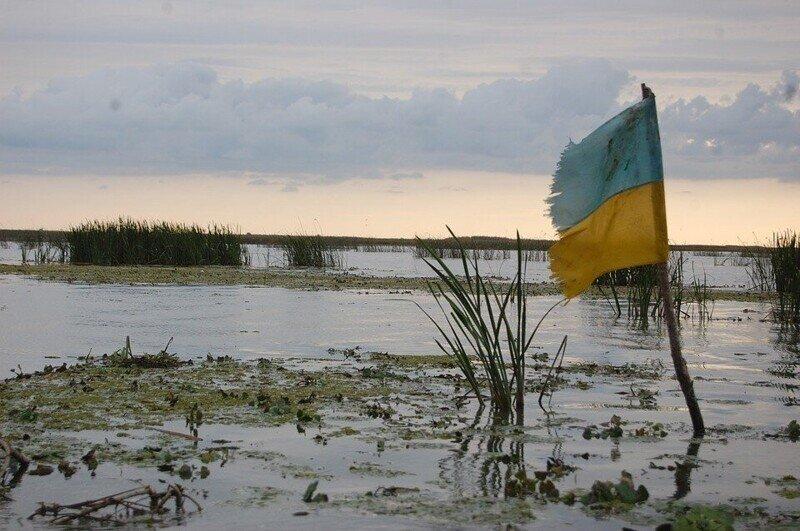 Украинская весна