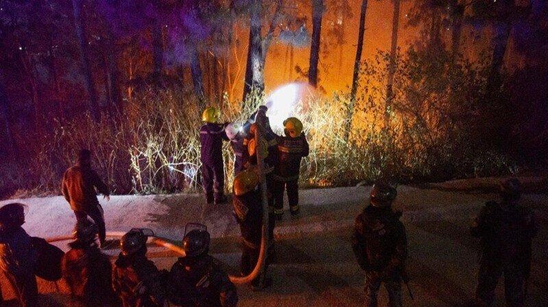 Американец поджег леса Калифорнии, чтобы скрыть убийство