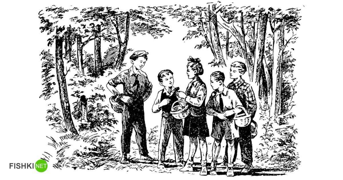 Грибная задача, которую предлагалось решить школьникам в СССР
