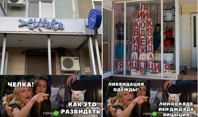 Мемы с осуждающим котиком, которые рассмешат любого
