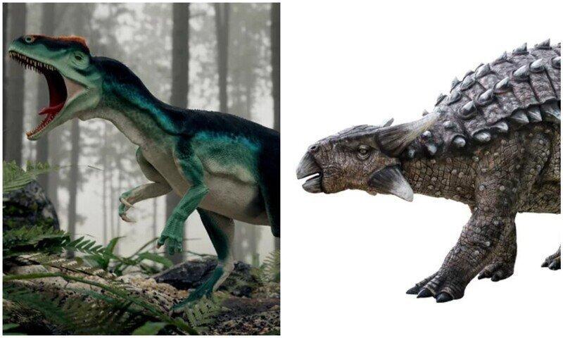 12 самых сильных и опасных динозавров