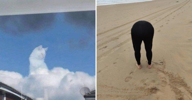 22 снимка, которые заставят вас проверить своё зрение