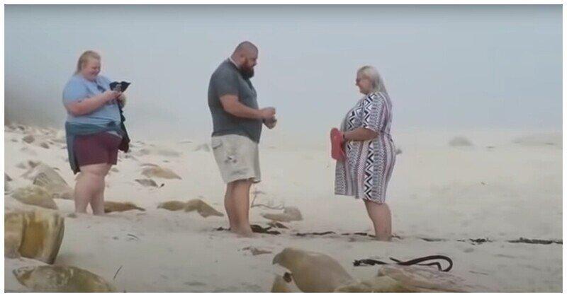 Женщина оконфузились во время съемки момента предложения руки и сердца