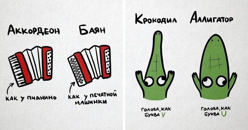 20 иллюстраций, наглядно показывающих разницу между объектами