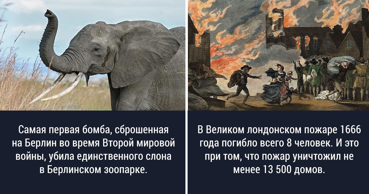 25 странных и любопытных исторических фактов