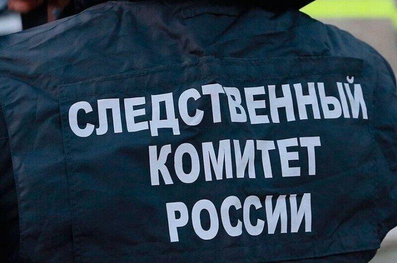 Новые подробности по делу о надругательстве над младшеклассницей в Барнауле