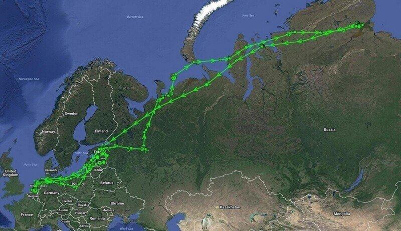 ЕС скорректирует миграцию гусей на юг в обход Беларуси