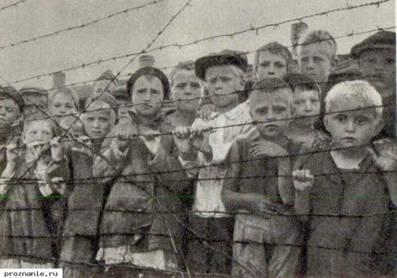 Российские военные историки рассказали о геноциде  населения СССР