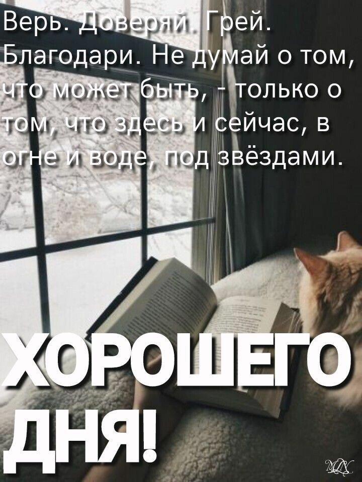 Калейдоскоп мыслей, мемов и картинок