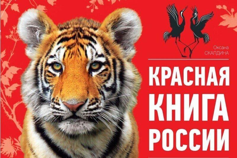 В августе вступает в силу закон, который разрешает добывать краснокнижных животных