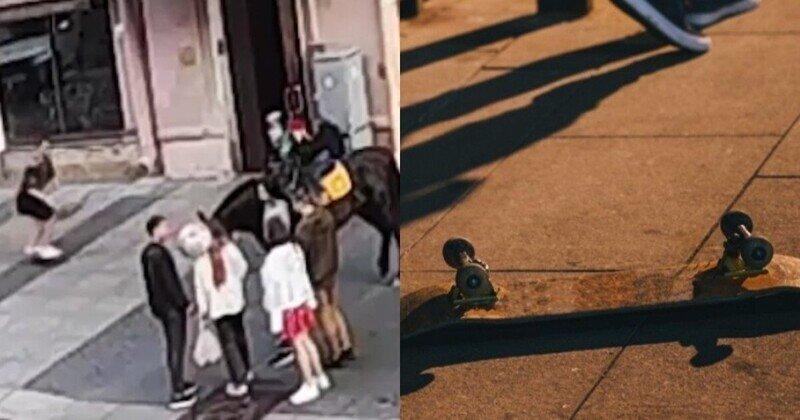 Скейтер в Петербурге получил копытом по голове после того, как решил проехать под брюхом лошади