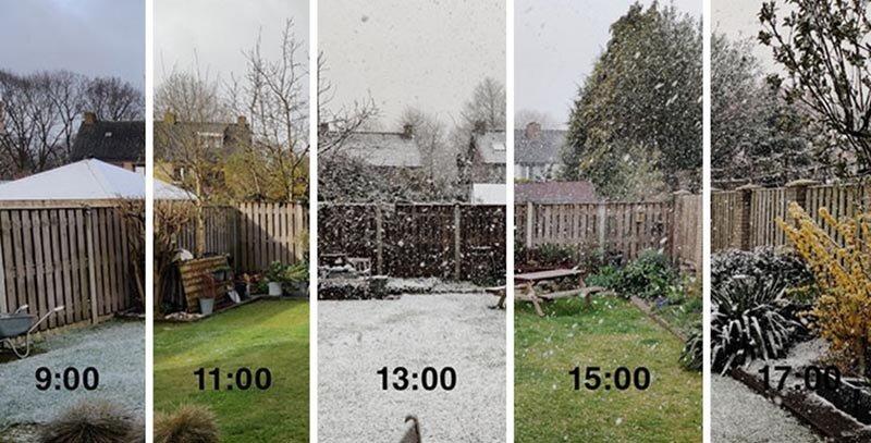Интересные изображения для сравнения, которые откроют вам новую перспективу