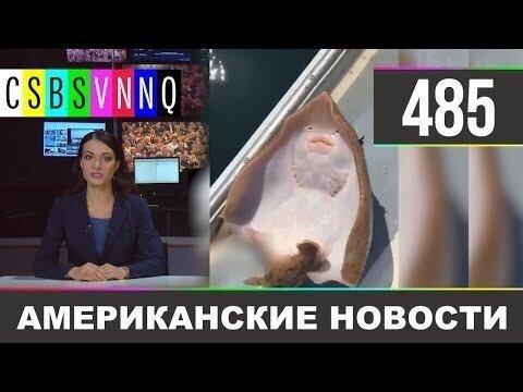 Американские новости 485