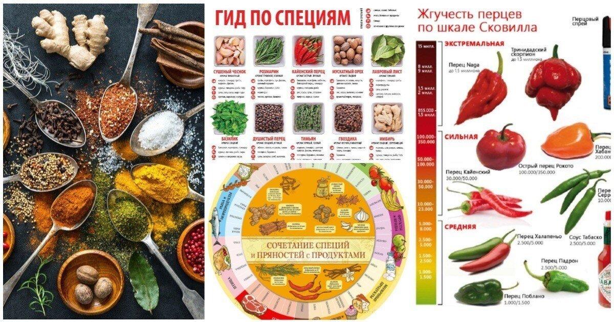 20 нужных шпаргалок о самом ароматном: гид по специям для кулинаров
