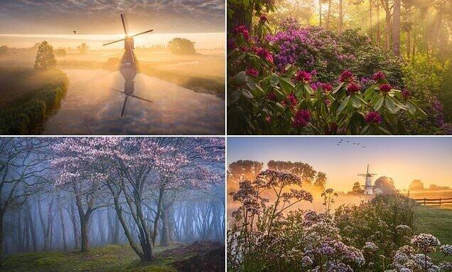 Весенние голландские пейзажи от Альберта Дроса