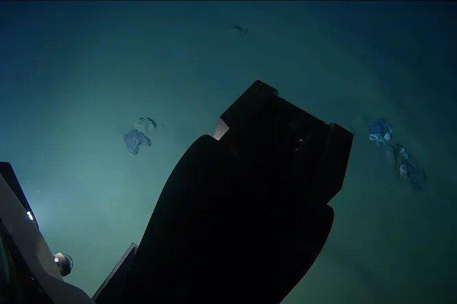 Ученый нашел плюшевого мишку на 10-километровой глубине