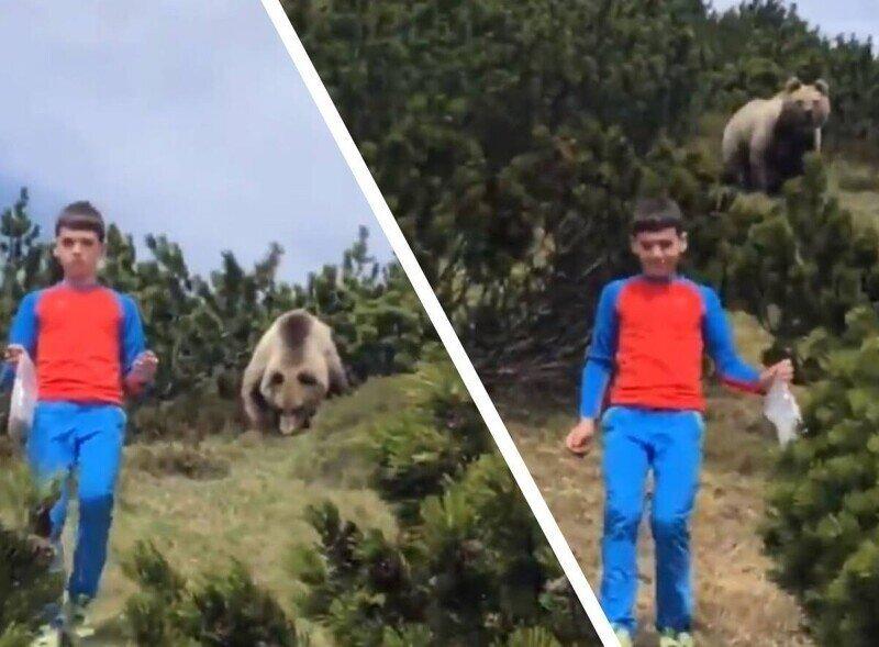 12-летний мальчик встретил в лесу медведя и именно эта верная реакция спасла ему жизнь