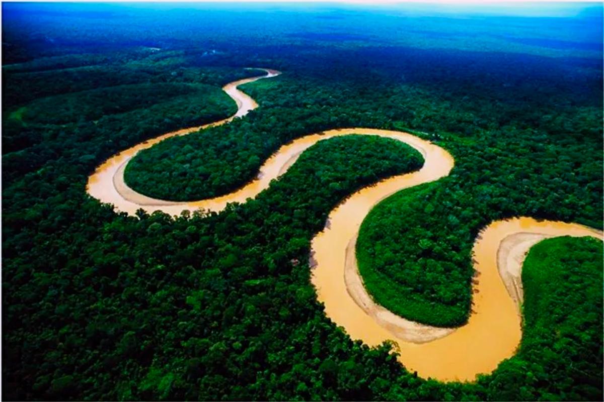 Почему через Амазонку не построили ни одного моста?