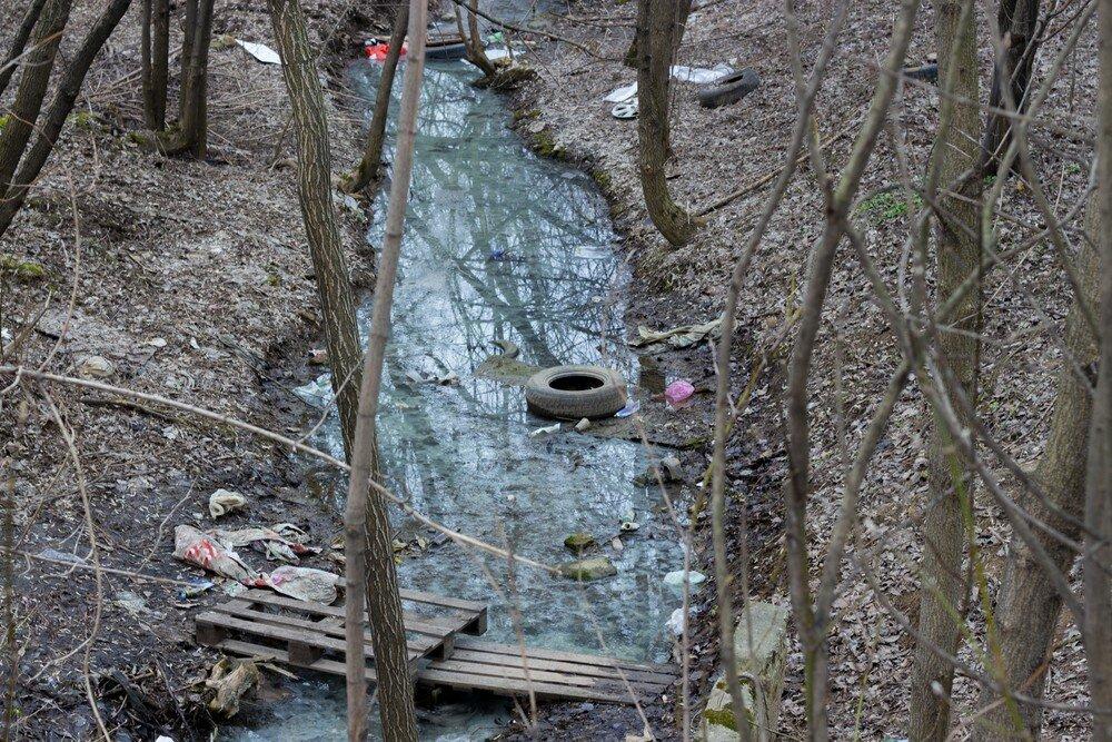 Почему вода в реках с наступлением весны сильно мутнеет?
