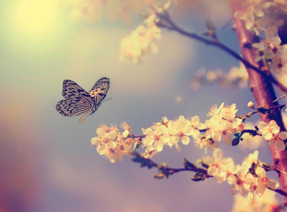 Почему так названа весна?