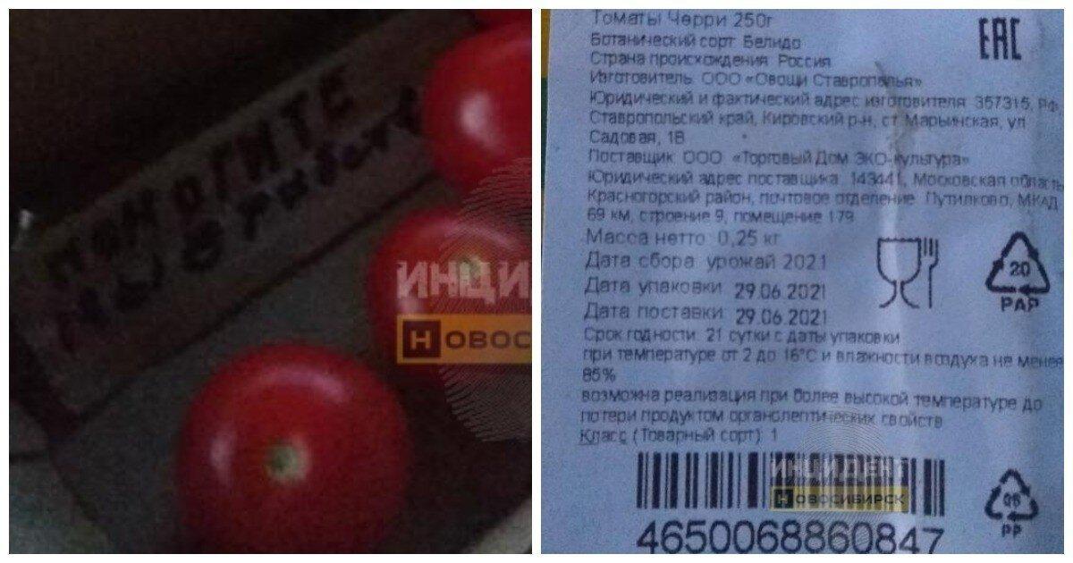«Мы в рабстве»: сибирячка в коробке из-под помидоров нашла послание с просьбой о помощи