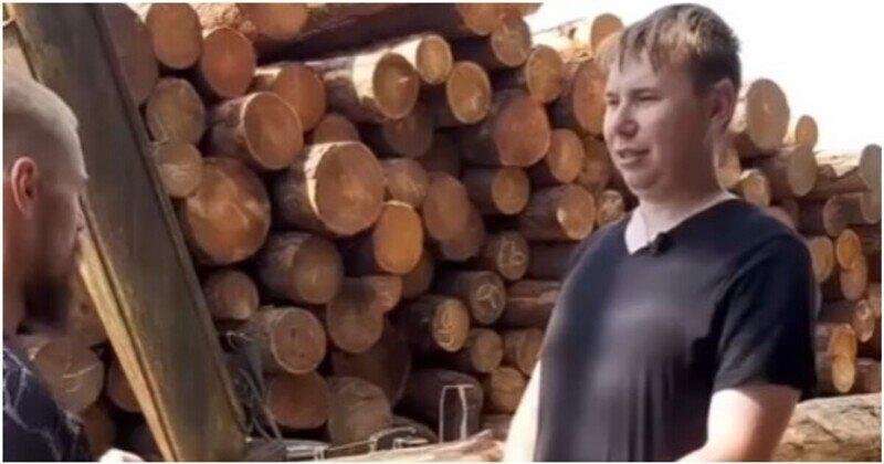 Почему российский лес уходит на экспорт