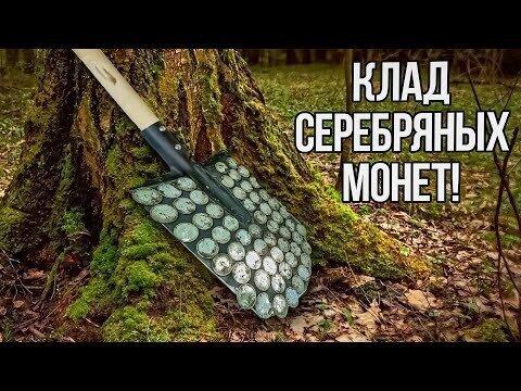 Клад серебряных под корнем столетнего дерева