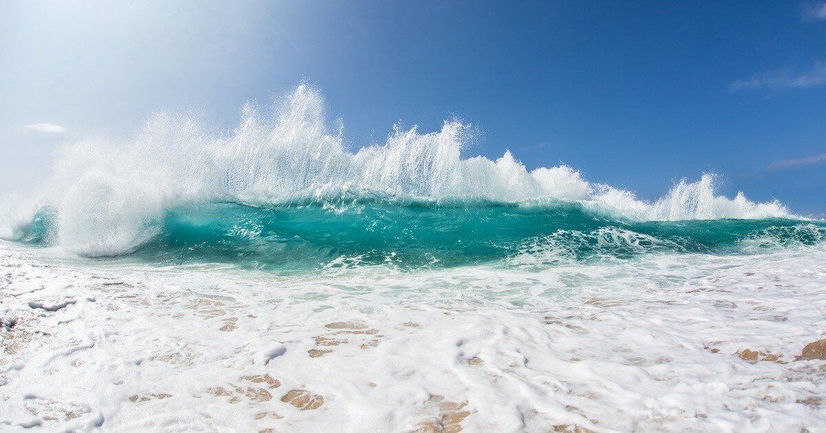30 фактов об океане, от которых у вас захватит дух