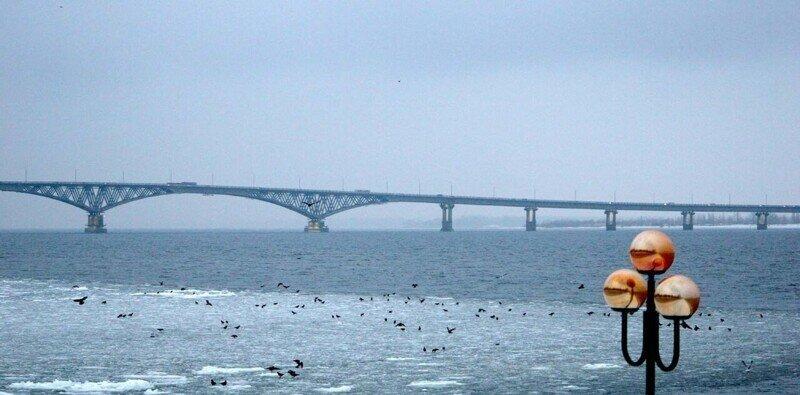 Топ-10 самых длинных мостов России