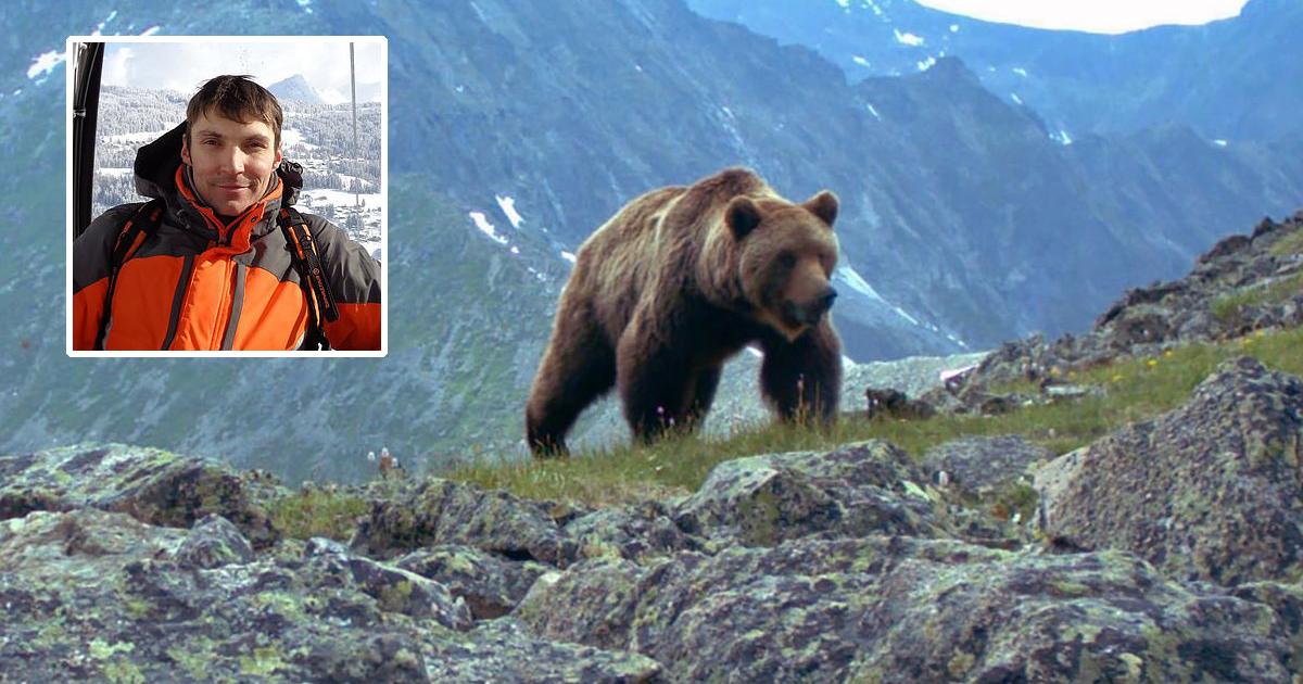 В Красноярском крае в результате нападения медведя погиб турист из Москвы