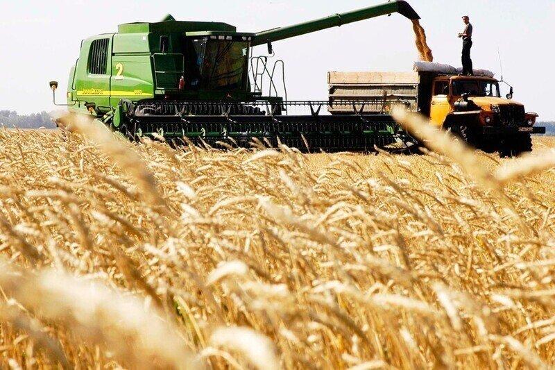 Гоним зерно в сотни стран, а у самих хлеб дорожает: Что происходит с ценами