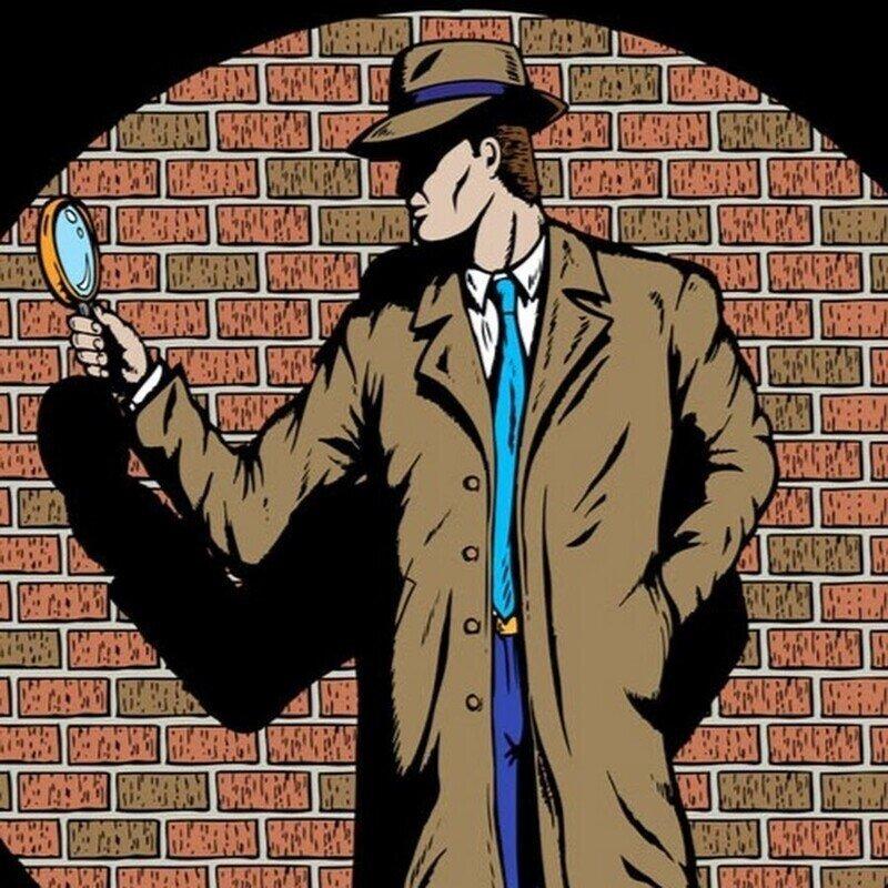 Как работают частные детективы в России