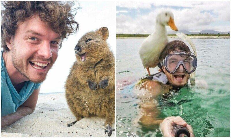 Парень делает позитивные селфи с самыми разными животными