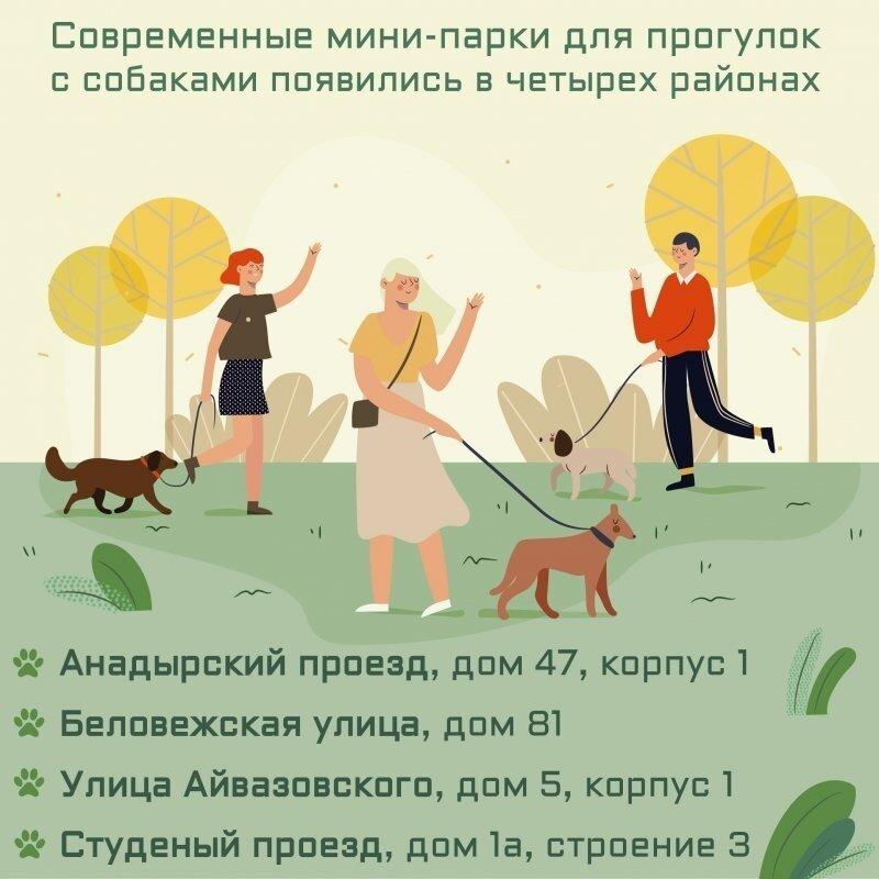 Современные мини-парки для прогулок с собаками появились в четырех районах Москвы