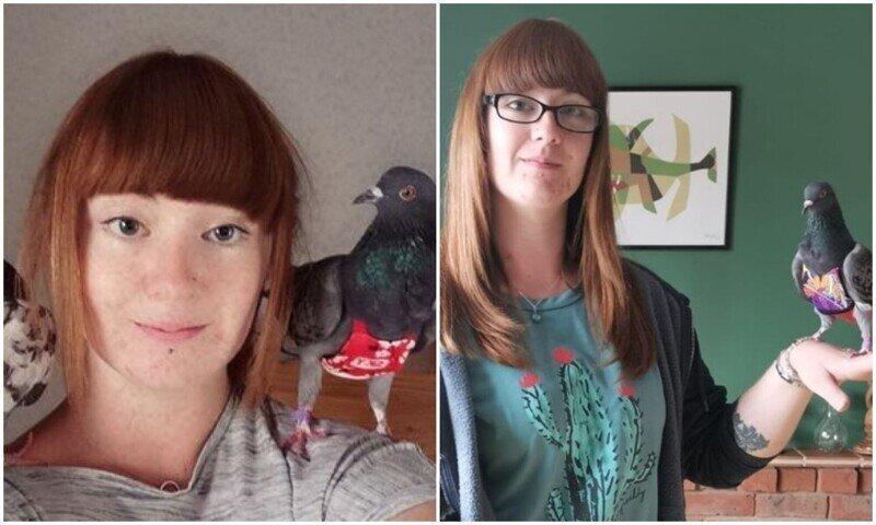 Сильная и независимая: британка растит спасенных голубей