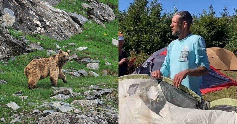 """""""Мы издали такой ультразвук!"""": в окрестностях Сочи медведь напал на туристов"""