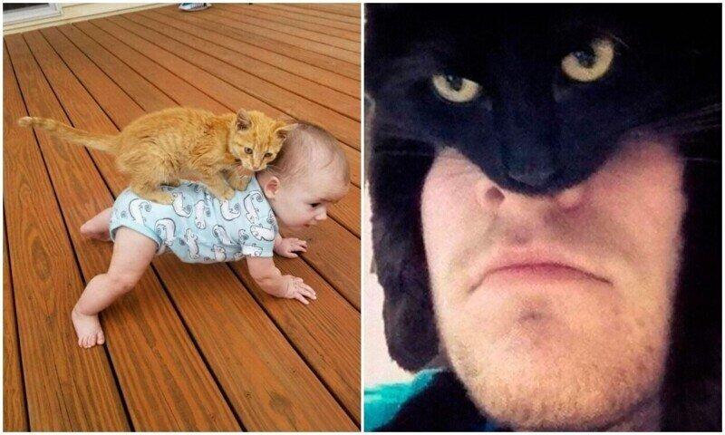Улыбнитесь: уморительные фото с котейками для настроения