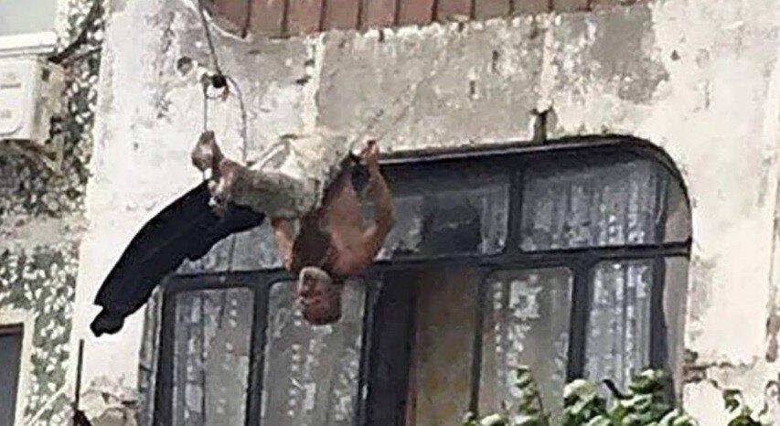 """Новороссийск: мужик летел из окна с 5 этажа, но путь в """"долину теней"""" преградили бельевые верёвки"""