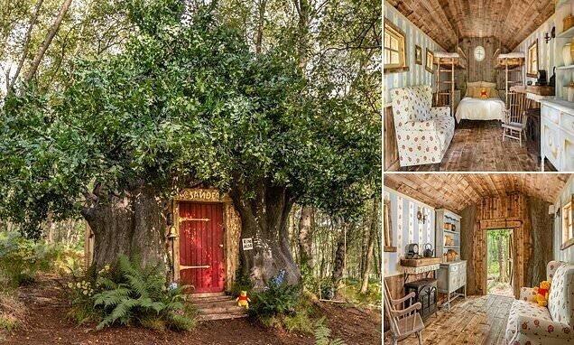 Компания Disney построила дом Винни-Пуха в английском лесу