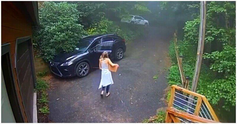 Забравшийся в автомобиль медведь застал девушку врасплох