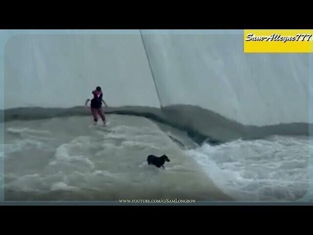 Ребята спасают собаку из бурного речного потока
