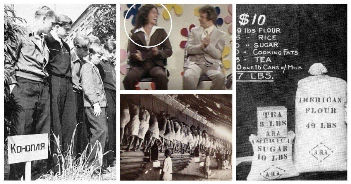 Да что же это такое: 18 исторических фото, на которых что-то происходит