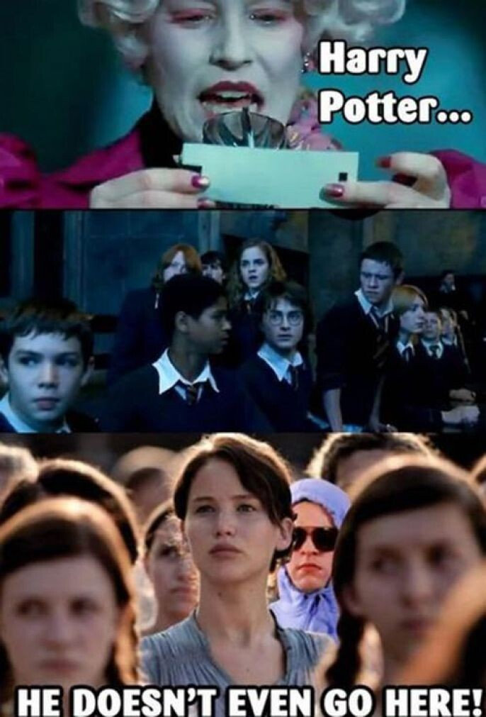 Best Hunger Games Meme