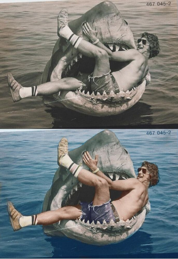 Shark Attack Photo Restored